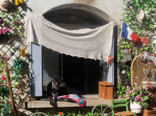 One of our neighbors enjoying the Béziers, France sun.