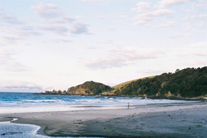Anchor Bay in Tawharanui Regional Park in Auckland. Jono Shields photos.
