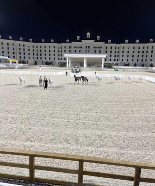 World Equestrian Center, Ocala, Florida.