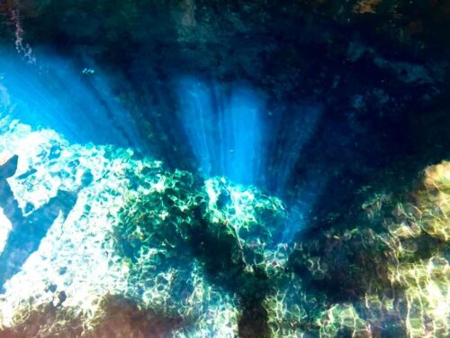 Sunlight Filtering through Cave Opening at Yax Muul