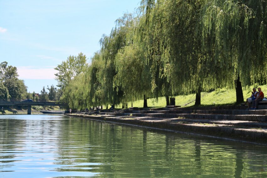 Huge weeping willows provide a graceful green curtain lining a lot of the river. A lot of people picnic, read or just enjoy the shade along the river bank.