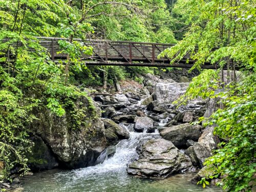 The trails in New River Gorge National Park feature many bridges and switchbacks as they go up and down and across the steep terrain.