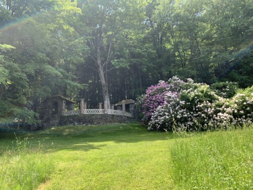 The rhododendron tunnel that leads to a stone walkway at the Vermont estate. Aysia Reed photos.