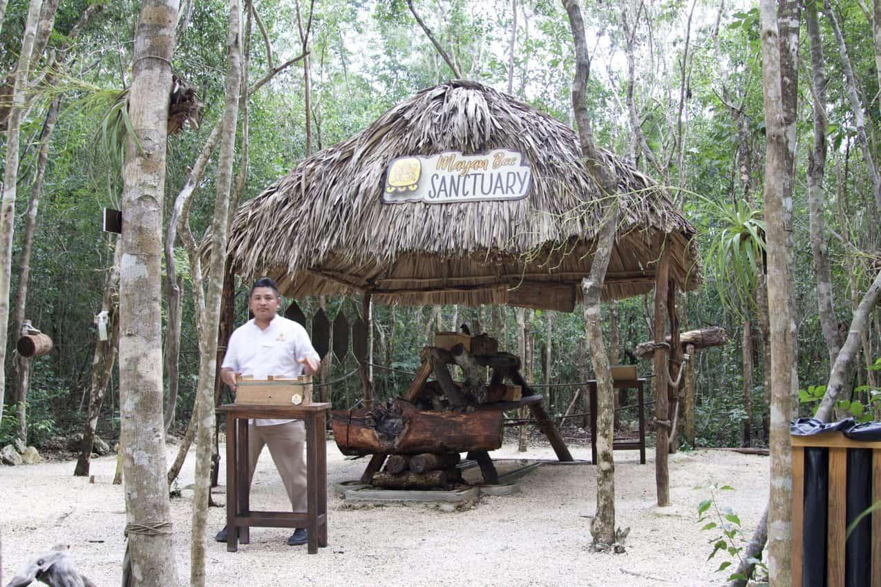 Jungle education center