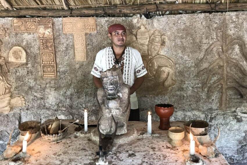 Mayan Bee Sanctuary: Cozumel's Treasure Trove of Bees