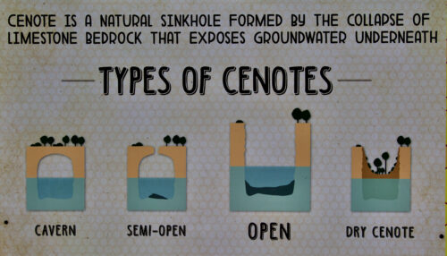 The four types of cenotes.