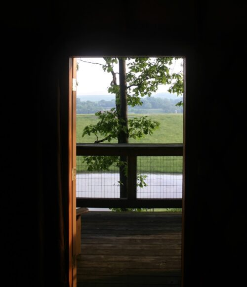 Tree house View from our Yurt at The Wilds