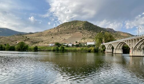 The unspoiled and remarkably beautiful Douro river's banks are dotted with olive trees, terraced vineyards and almond groves with very little development.