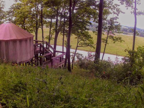 wilds view from yurt