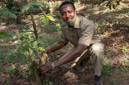 Tanzania's Luxurious Arusha Coffee Lodge